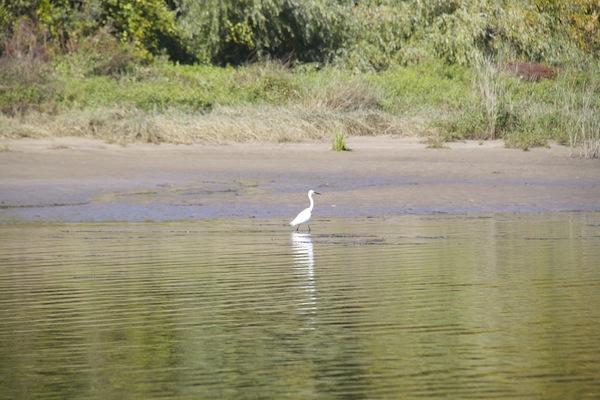 rio tejo 8